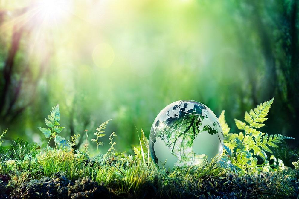 materiały termoizolacyjne są przyjazne środowisku